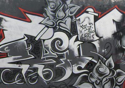 Graffiti Street art      Flow - Haiastan - Deza - TWE - Zert 711   2009 Carros (06)