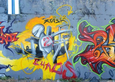 Graffiti Street art      Reox SPM - Krash 2 - Zert 711   2010 Carros (06)