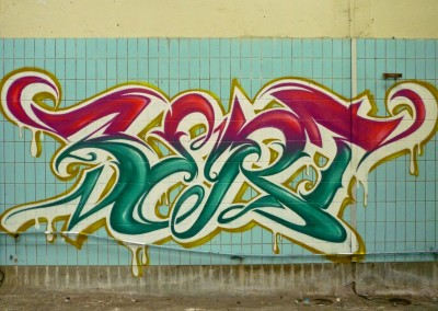 Graffiti Street art   Zert en 2015 à Chambéry (73)